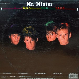 MR.MISTER I WEAR THE FACE