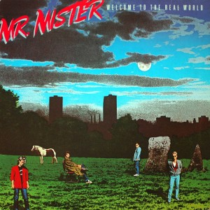 MR.MISTER WELCOME TO THE REAL WORLD